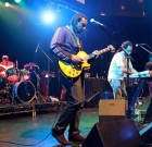 SEE: The Original Wailers Perform at the Key Club