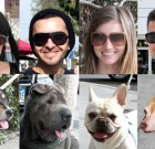 WeHo Doggie Style: Can You Match These People to Their Pooches?