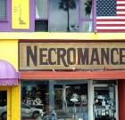 Melrose Shop Owner Faces Legal Action Over Importing Bat Skulls