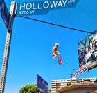 Finding Inspiration in WeHo's Hanging Teddy Bears