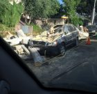 Heavy Winds Topple Trees and Smash Cars in WeHo
