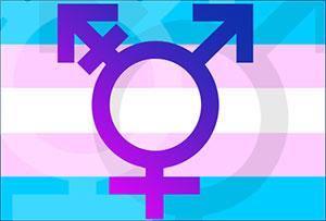 Trans Image