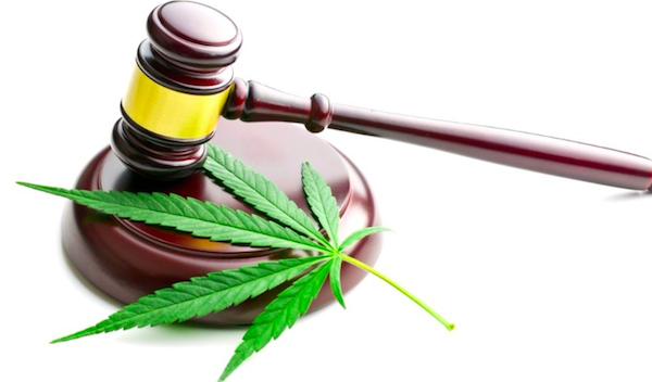 f5a0574c7eb78 Not one of West Hollywood's four medical cannabis dispensaries, each of  which has a temporary license for recreational cannabis sales, has ranked  high ...